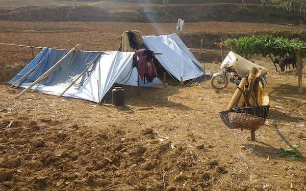 Make shift tents & WPnet